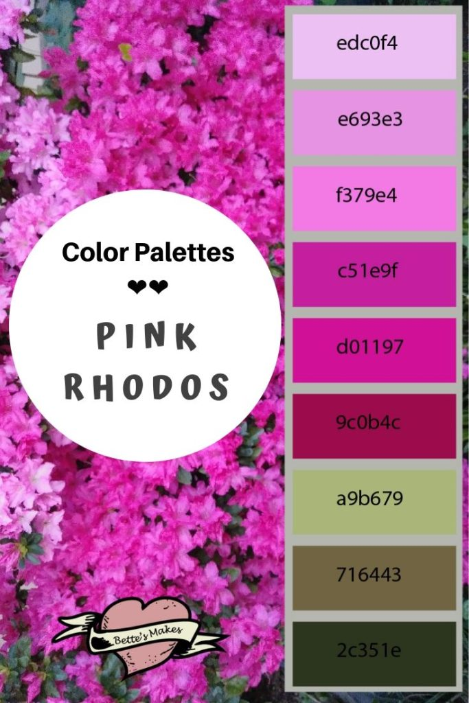 Color Palete Pink Rhododendron