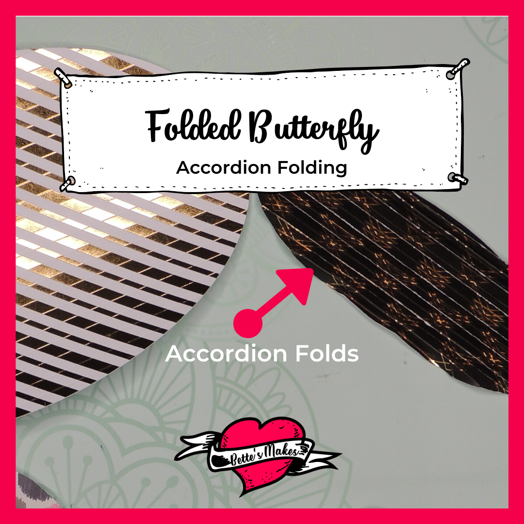Folded Butterfly - Accordion Folds