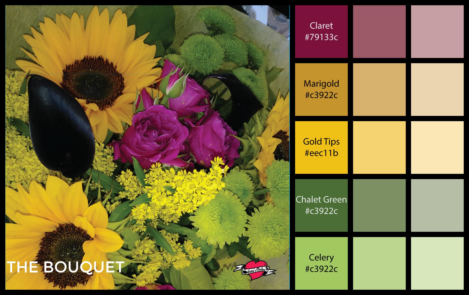 Professional Color Palettes