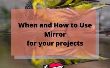 When and How to Use Mirror for your projects