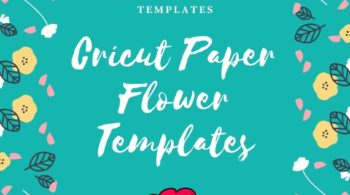 Free Cricut Paper Flower Templates
